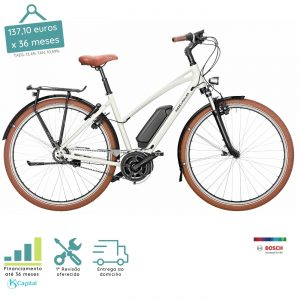 Riese and Müller Cruiser Mixte Urban Vario